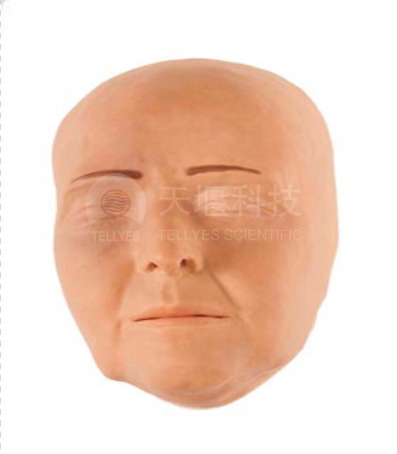 面部填充美容训练模块
